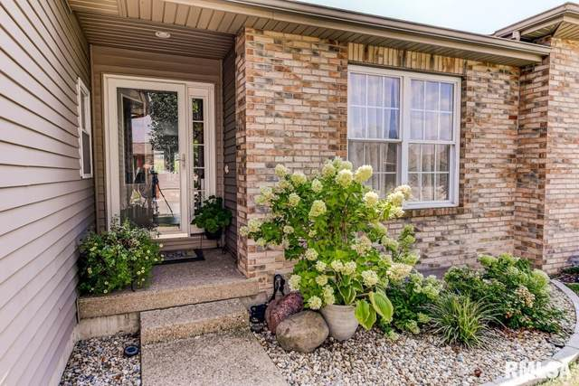 2919 , #11 S Meadowbrook Street #11, Springfield, IL 62711 (#CA1009385) :: RE/MAX Preferred Choice