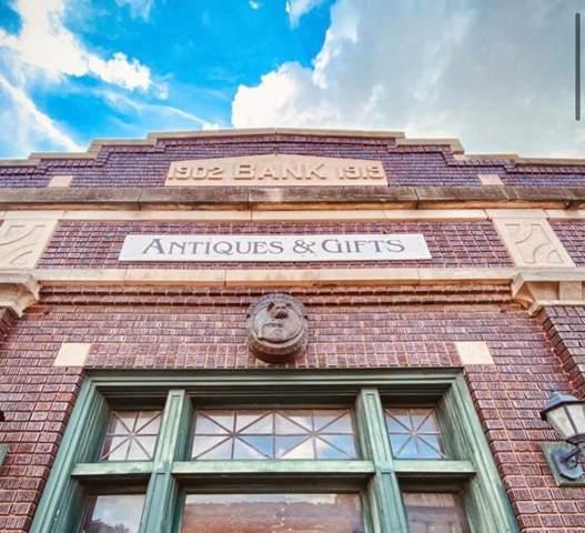 104 Governor Oglesby Street, Elkhart, IL 62634 (#CA1009402) :: Kathy Garst Sales Team