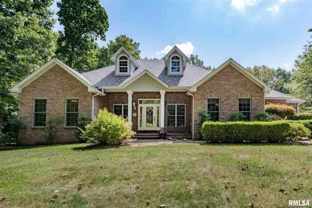 18174 Lone Oak Terrace, West Frankfort, IL 62896 (#QC4225811) :: Paramount Homes QC
