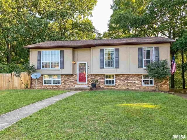 637 Simon Drive, East Peoria, IL 61611 (#PA1228558) :: Paramount Homes QC