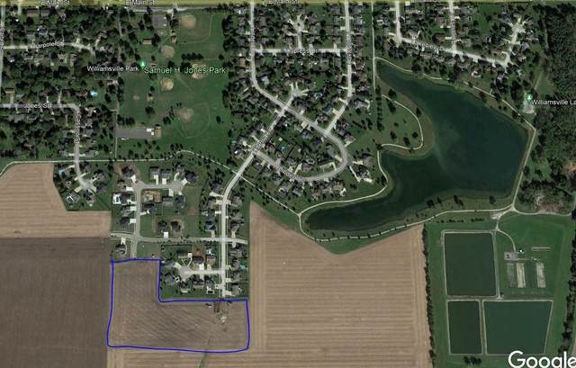 421 Burr Oak Drive, Williamsville, IL 62693 (#CA1009726) :: RE/MAX Professionals