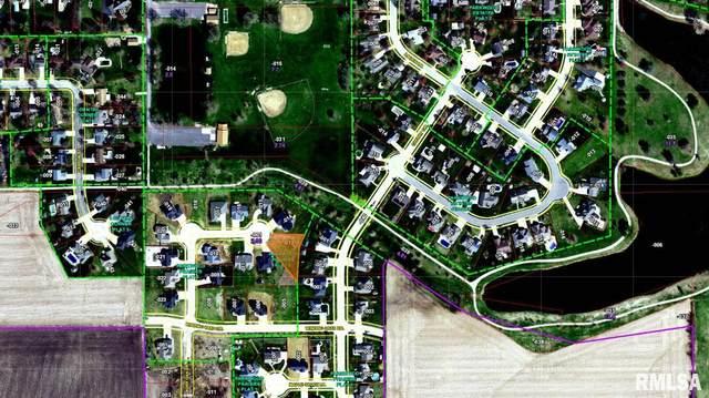 920 Chestnut Circle, Williamsville, IL 62693 (#CA1009736) :: RE/MAX Professionals