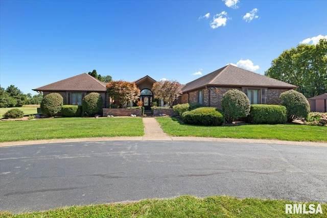 2738 Emerson Road, New Berlin, IL 62670 (#CA1009851) :: Killebrew - Real Estate Group