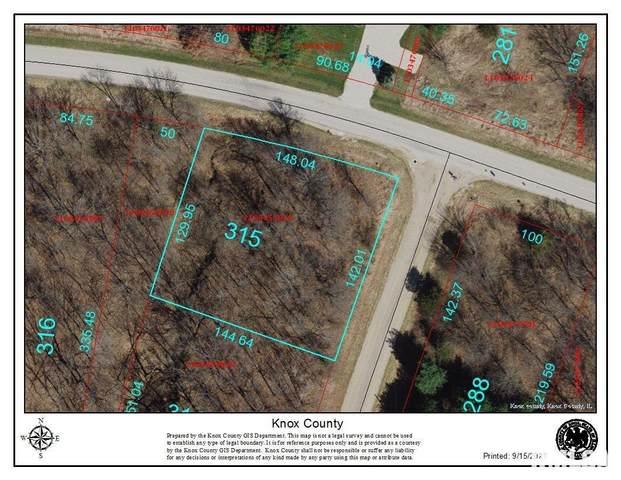 2315 Lakeview Road South, Dahinda, IL 61428 (#PA1228802) :: RE/MAX Preferred Choice