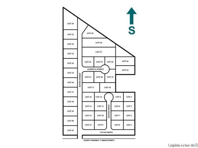 Sunset Village Street, Farmersville, IL 62533 (#CA1010143) :: Kathy Garst Sales Team