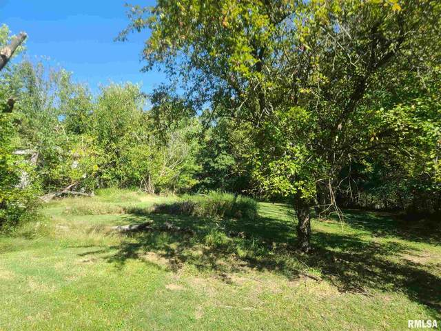 1072 Creal Springs Road, Creal Springs, IL 62922 (#QC4226853) :: RE/MAX Preferred Choice