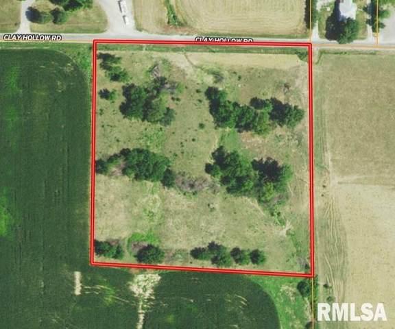 Clay Hollow Road, Alsey, IL 62610 (#CA1010539) :: Kathy Garst Sales Team