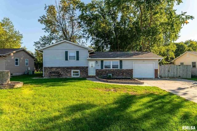511 County Road, McLean, IL 61754 (#CA1010549) :: Kathy Garst Sales Team