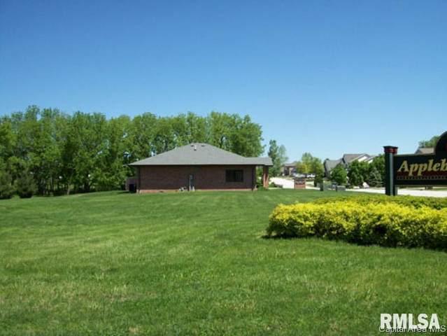 1 Wadsworth, Jacksonville, IL 62650 (#CA151578) :: RE/MAX Preferred Choice