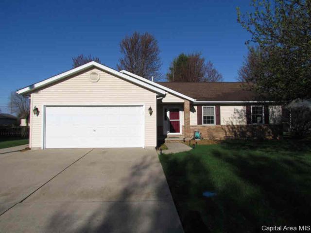 6509 Christine Ct, Springfield, IL 62712 (#CA192267) :: Adam Merrick Real Estate