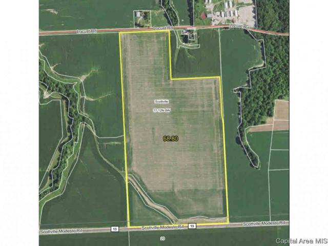 Scottville Modesto Road, Scottville, IL 62683 (#CA192877) :: Adam Merrick Real Estate