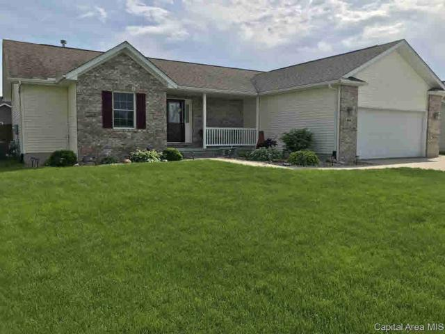 1610 Sidener Hall, Chatham, IL 62629 (#CA192888) :: Adam Merrick Real Estate
