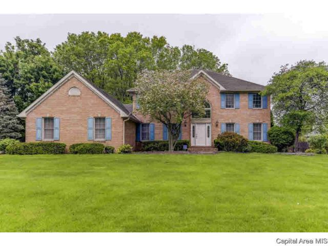 1405 Woods Farm, Springfield, IL 62704 (#CA192960) :: Adam Merrick Real Estate