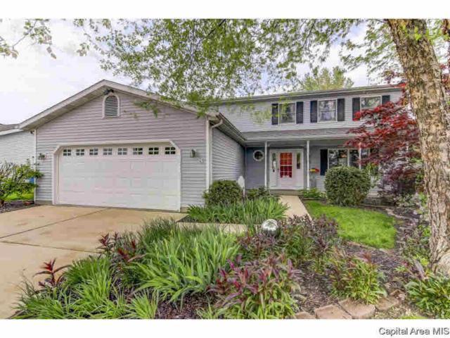 8 Taft, Rochester, IL 62563 (#CA193084) :: Adam Merrick Real Estate