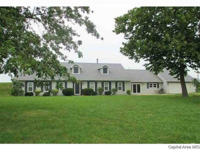 1264 Lee Road, Bluffs, IL 62621 (#CA193139) :: Killebrew - Real Estate Group