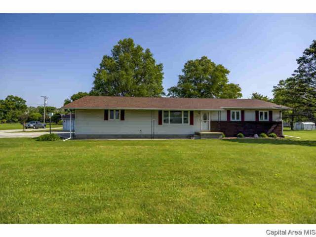 224 W Oak St, Witt, IL 62094 (#CA193430) :: Adam Merrick Real Estate