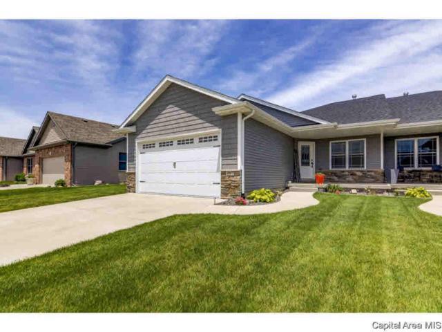 4807 Chestnut, Springfield, IL 62711 (#CA193468) :: Killebrew - Real Estate Group