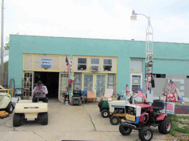 177 W Elm Street, Waverly, IL 62692 (#CA193568) :: Adam Merrick Real Estate