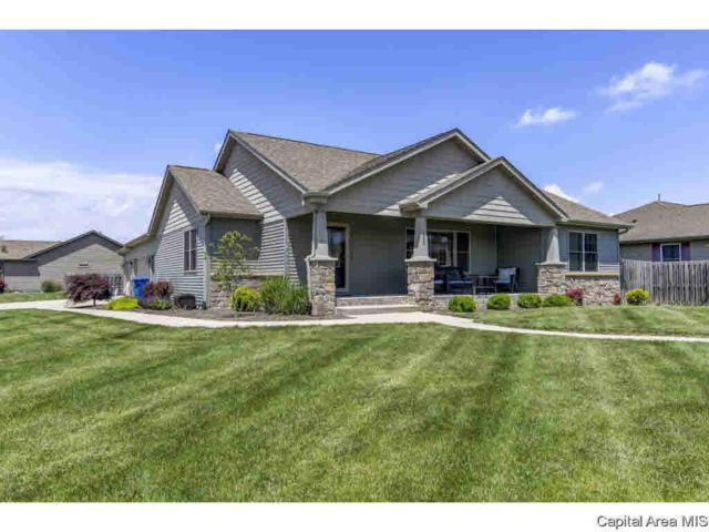 295 Green Meadow, Sherman, IL 62684 (#CA193702) :: Killebrew - Real Estate Group