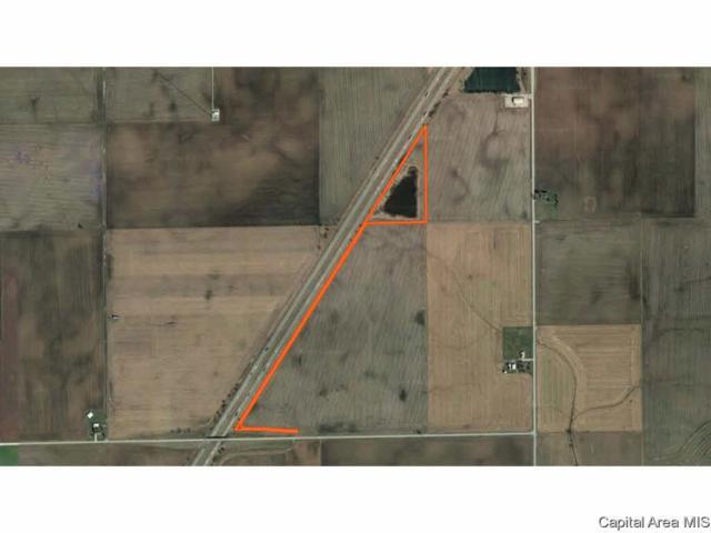 000 I-72, Argenta, IL 62501 (#CA193718) :: Killebrew - Real Estate Group