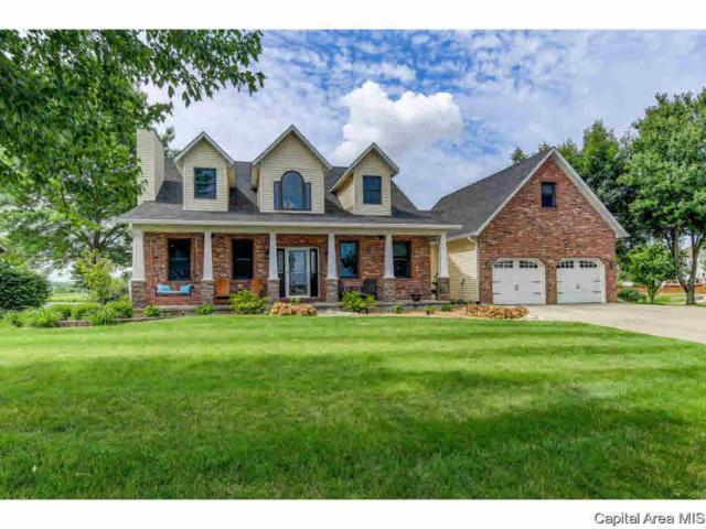 116 Lakeview, Williamsville, IL 62693 (#CA193751) :: Killebrew - Real Estate Group
