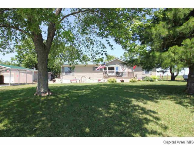 3196 Hermes Road, Alexander, IL 62601 (#CA193782) :: Adam Merrick Real Estate
