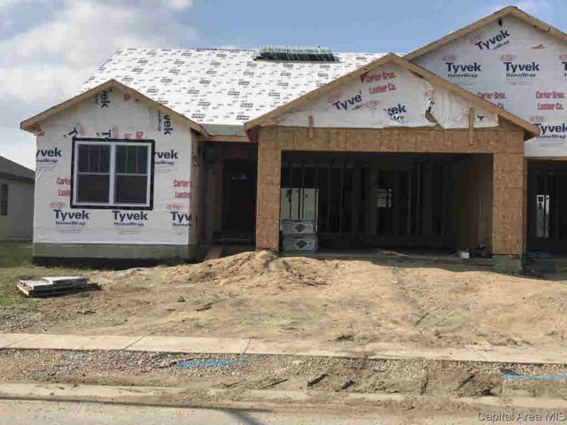 4816 Chestnut Drive, Springfield, IL 62711 (#CA193814) :: Killebrew - Real Estate Group