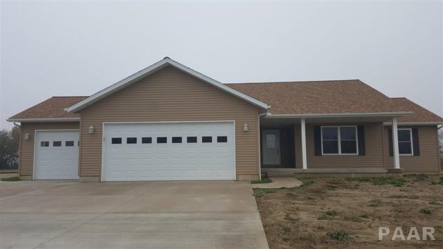 28927 N Woodside Drive, Canton, IL 61520 (#1179563) :: Adam Merrick Real Estate
