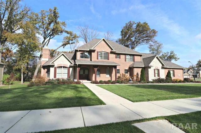 6421 W Stonebrook Drive, Edwards, IL 61528 (#1181826) :: Adam Merrick Real Estate