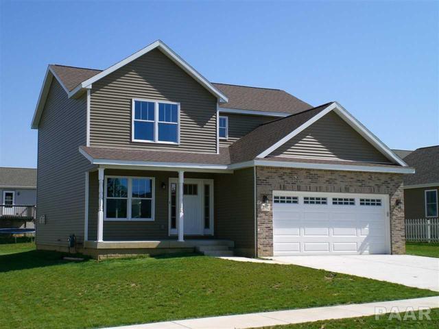 407 Newcastle, Mackinaw, IL 61755 (#1183781) :: Adam Merrick Real Estate
