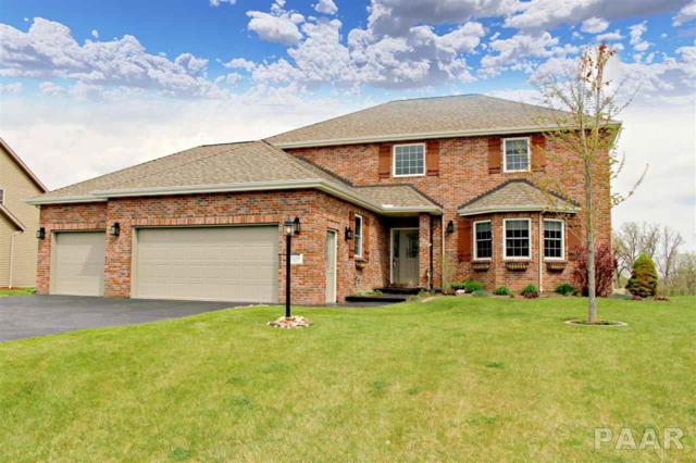 1235 Winterberry Avenue, Germantown Hills, IL 61548 (#1184769) :: RE/MAX Preferred Choice