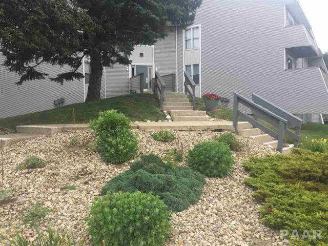2618 W Willow Lake Drive #224, Peoria, IL 61614 (#1185074) :: Adam Merrick Real Estate