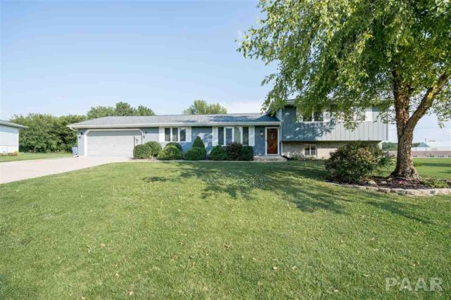 336 Whispering Oaks Drive, Germantown Hills, IL 61548 (#1185702) :: Adam Merrick Real Estate