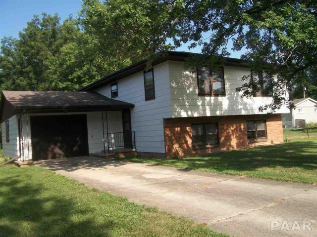 315 S Niles Street, Metamora, IL 61548 (#1185990) :: Adam Merrick Real Estate