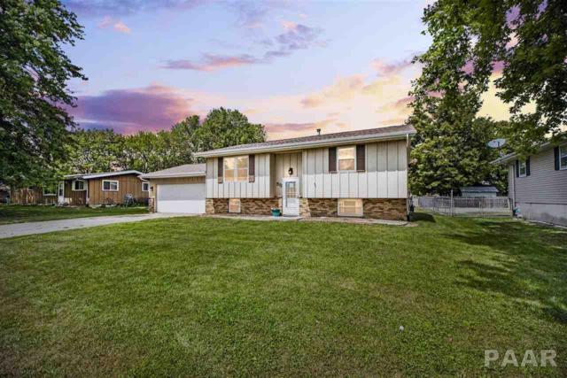 511 Manor Drive, Metamora, IL 61548 (#1186946) :: RE/MAX Preferred Choice