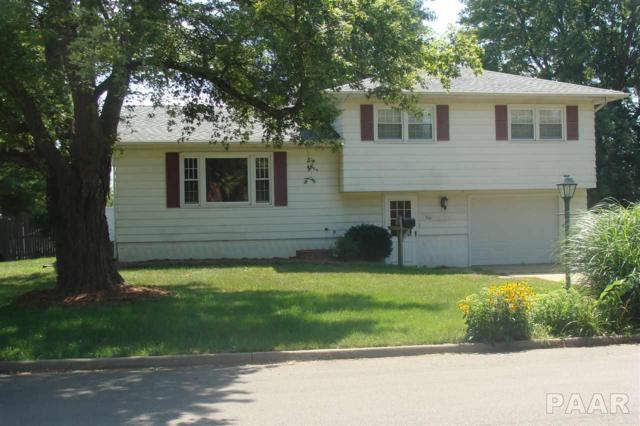 566 E Vine Street, Farmington, IL 61531 (#1186947) :: Adam Merrick Real Estate