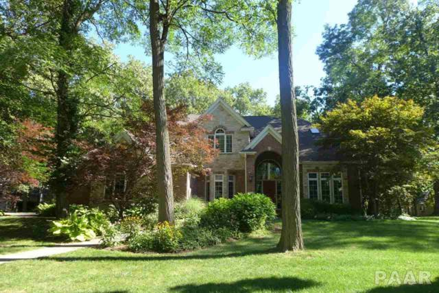 11519 N Nettle Creek Drive, Dunlap, IL 61525 (#1187100) :: Adam Merrick Real Estate