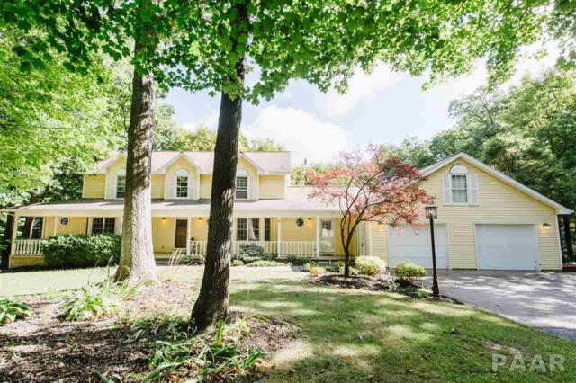 310 Townhall Road, Metamora, IL 61548 (#1187426) :: Adam Merrick Real Estate