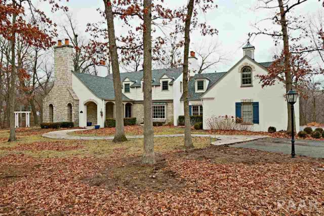 9842 N Thousand Oaks Court, Peoria, IL 61615 (#1188793) :: Adam Merrick Real Estate