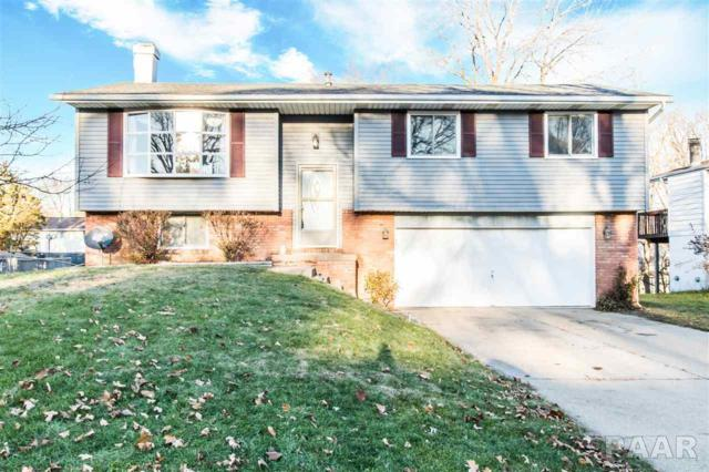 201 Kickapoo Drive, East Peoria, IL 61611 (#1189500) :: Adam Merrick Real Estate