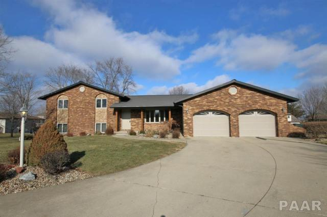 111 Knollaire Court, Metamora, IL 61548 (#1190389) :: Adam Merrick Real Estate