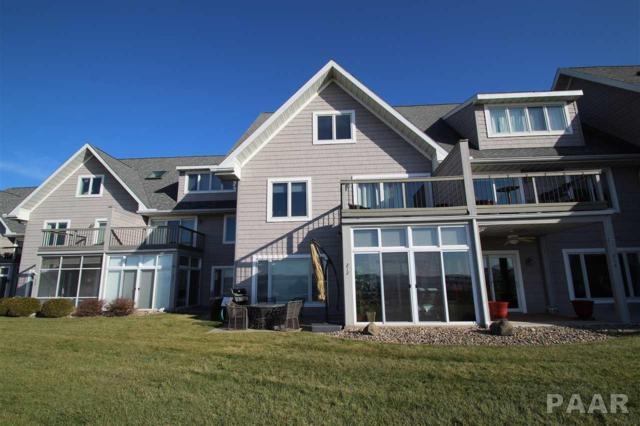 212 Harbor Pointe Drive, East Peoria, IL 61611 (#1190474) :: Adam Merrick Real Estate