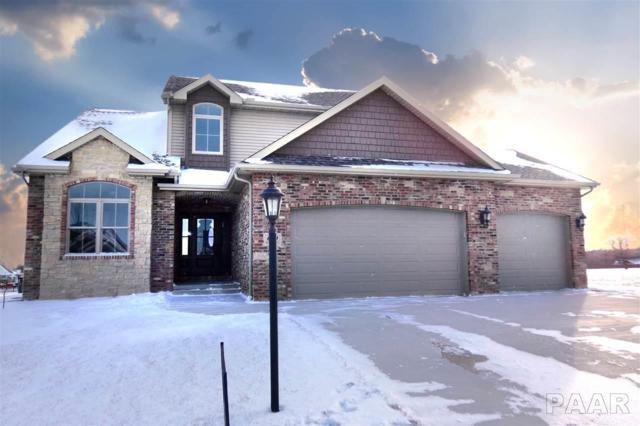 600 W Copper Ridge Court, Dunlap, IL 61525 (#1190752) :: Adam Merrick Real Estate