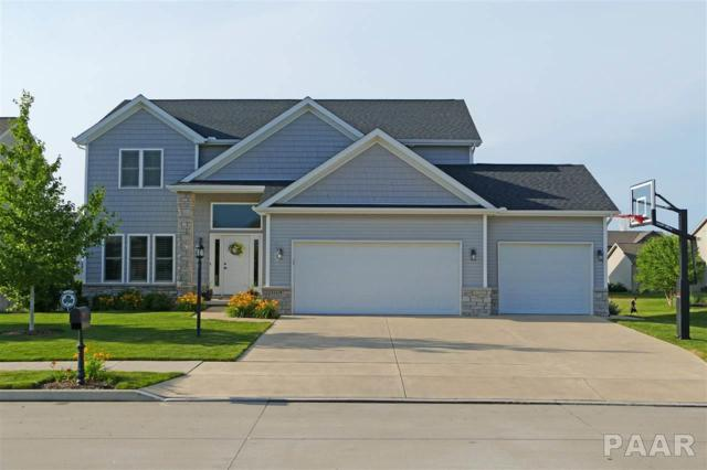 11118 N Saddlehorn Way, Dunlap, IL 61525 (#1190955) :: Adam Merrick Real Estate