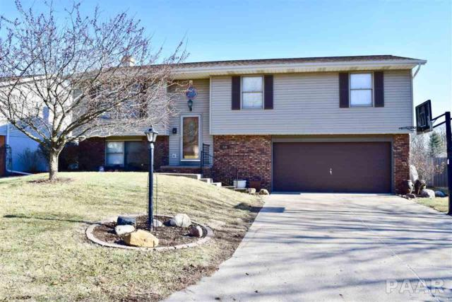 336 Juniper Lane, East Peoria, IL 61611 (#1191033) :: Adam Merrick Real Estate