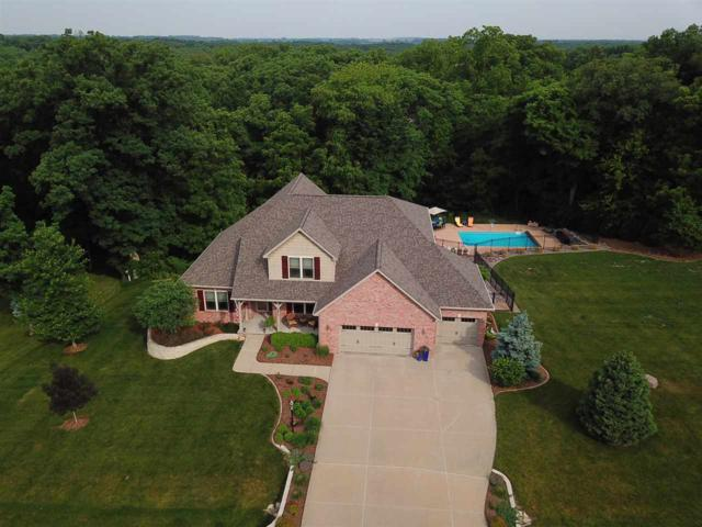 2417 Cobble Creek Court, Hanna City, IL 61536 (#1192093) :: Adam Merrick Real Estate