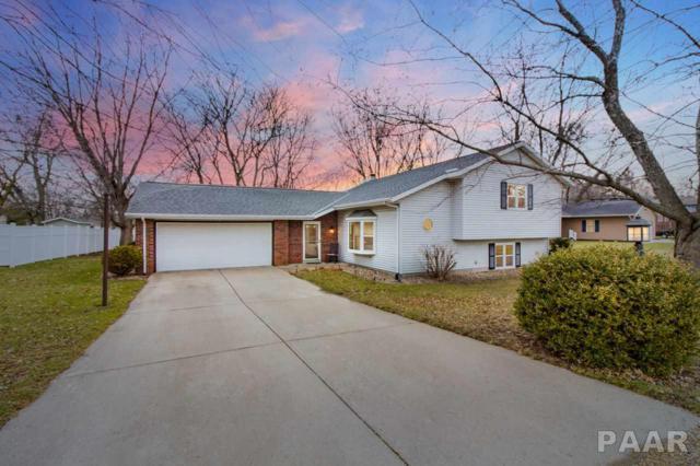 318 Pinecrest Drive, Germantown Hills, IL 61548 (#1192118) :: Adam Merrick Real Estate