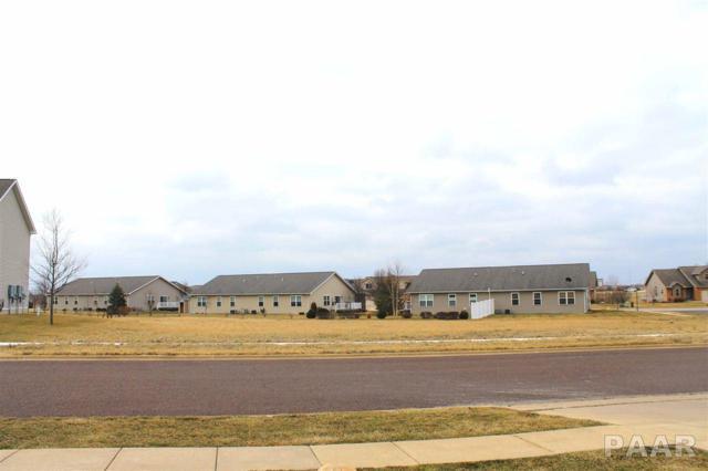 Lot 16 Mallard Crossing, Washington, IL 61571 (#1192258) :: Adam Merrick Real Estate