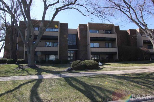 6909 N Terra Vista Drive 8-102, Peoria, IL 61614 (#PA1192872) :: The Bryson Smith Team