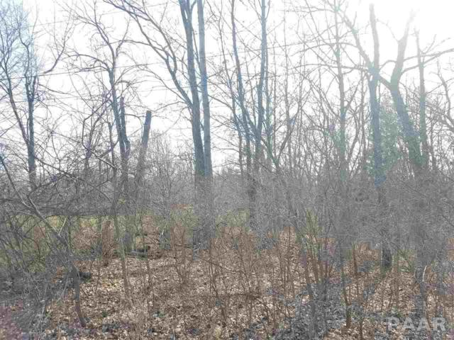 Lot 3 N Carola Court, Peoria, IL 61615 (#PA1193116) :: Killebrew - Real Estate Group